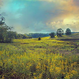 John Rivera - Golden Meadows