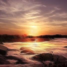 Michele Loftus - Golden Shore at Sunset