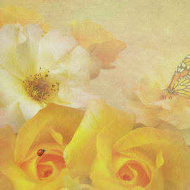 Diane Schuster - Golden Showers Yellow Roses