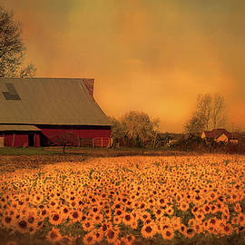 Theresa Campbell - Golden Sunflower Harvest
