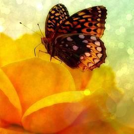 Lilia D - Golden World of Butterfly