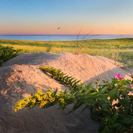 Bill Wakeley - Good Morning Cape Cod