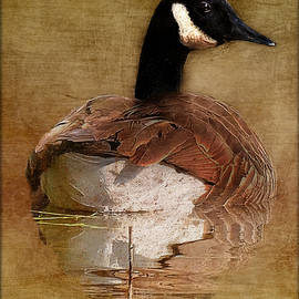 Constance Lowery - Goose Gliding On The Pond