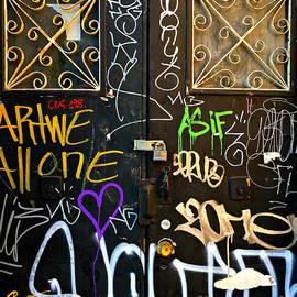 Miriam Danar - Graffiti Door - N Y C Street Art