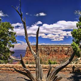 Allen Beatty - Grand Canyon # 11 - Moran Point