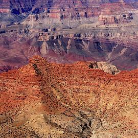 Aidan Moran - Grand Canyon
