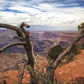 James Bethanis - Grand Canyon River View