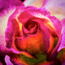 Peter Hogg - Grandiflora Rose