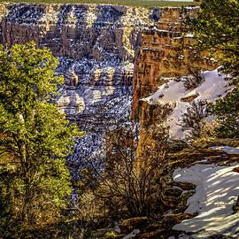 Brian Tada - Grandview Winter at Grand Canyon