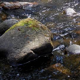 Chris Gudger - Granite Strong