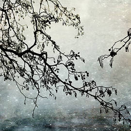 Randi Grace Nilsberg - Grasping the Distance