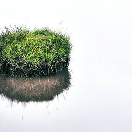 grass island - Joana Kruse