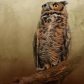 Jai Johnson - Great Horned Owl At Shiloh