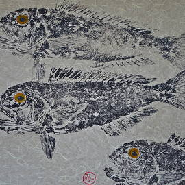 Jeffrey Canha - Great Northern Tilefish - Golden Tilefish 2
