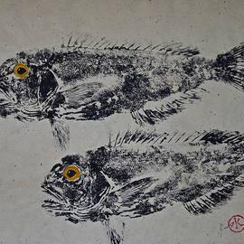 Jeffrey Canha - Great Northern Tilefish - Golden Tilefish 3