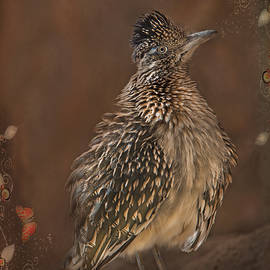 Barbara Manis - Greater Roadrunner