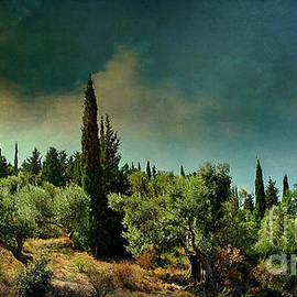 Remi D Photography - Grecian landscape