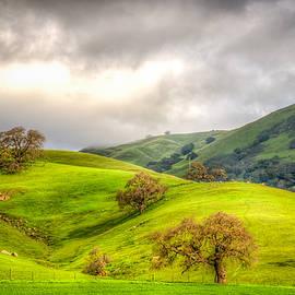 Spencer McDonald - Green Acres of California