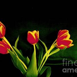 Larry Weingartner - Green an Tulips
