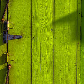 Green Door With Hinges  - Garry Gay