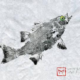 Matt Monahan - Green Eye White Bass