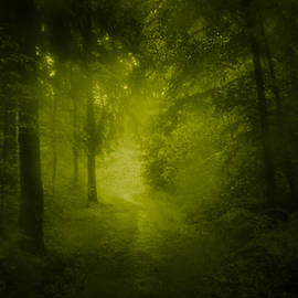 Dorit Fuhg - Green Forest