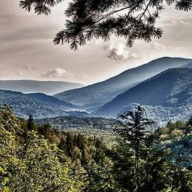 Nathan Larson - Green Mountain National Forest