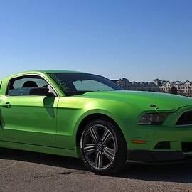 Davandra Cribbie - Green Mustang