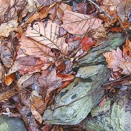 Betsy Zimmerli - Green Rock