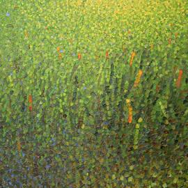 Anna Wolska - Green vibrations