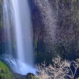 Guido Montanes Castillo - Green waterfall