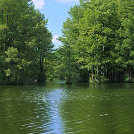 Aaron Rushin - Greenfield Lake