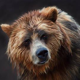 Johanne Dauphinais - Grizzly bear