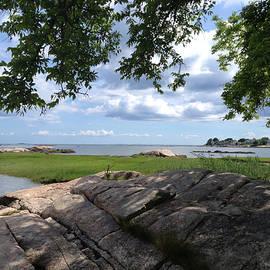 Jane Maurer - Guilford, Ct. Long Island Sound view.