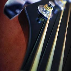Carlos Caetano - Guitar Head Stock