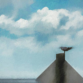 Marvin Spates - Gull And Sky