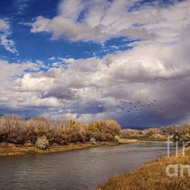 Janice Rae Pariza - Gunnison River Autumn Sky