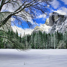 Patricia Sanders - Half Dome In The Snow