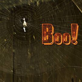 Mother Nature - Halloween Greeting Card - Spider Web and BOO