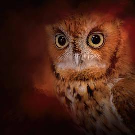Jai Johnson - Halloween Owl