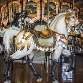 Williams-Cairns Photography LLC - Hampton Carousel