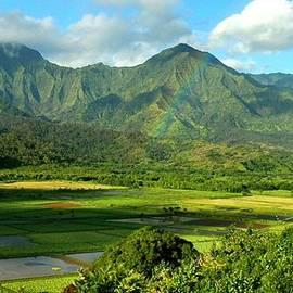 Stephen Vecchiotti - Hanalei Valley Rainbow