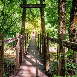 Alexey Stiop - Hanging bridge