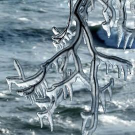 David T Wilkinson - Hanging Ice Sculpture