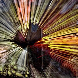 Stuart Litoff - Hanging Lamp Abstract #2