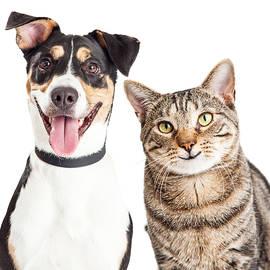 Happy Dog and Cat Together Closeup - Susan Schmitz