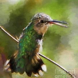Tina  LeCour - Happy Hummingbird