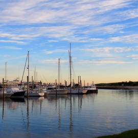 Dianne Cowen - Harbor in Spring