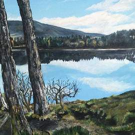 Claire Murray - Harlaw Trees