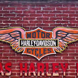 Steven Parker - Harley Davidson in Las Vegas